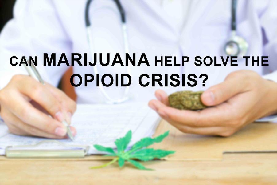 marijuana vs opioid pain meds