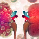 DNA Origami Nanoparticles to Treat Acute Kidney Injury