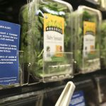 FDA: Romaine lettuce from California 'likely' to blame for E.coli outbreak