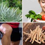 Top 7 Tips to Balance Your Hormones