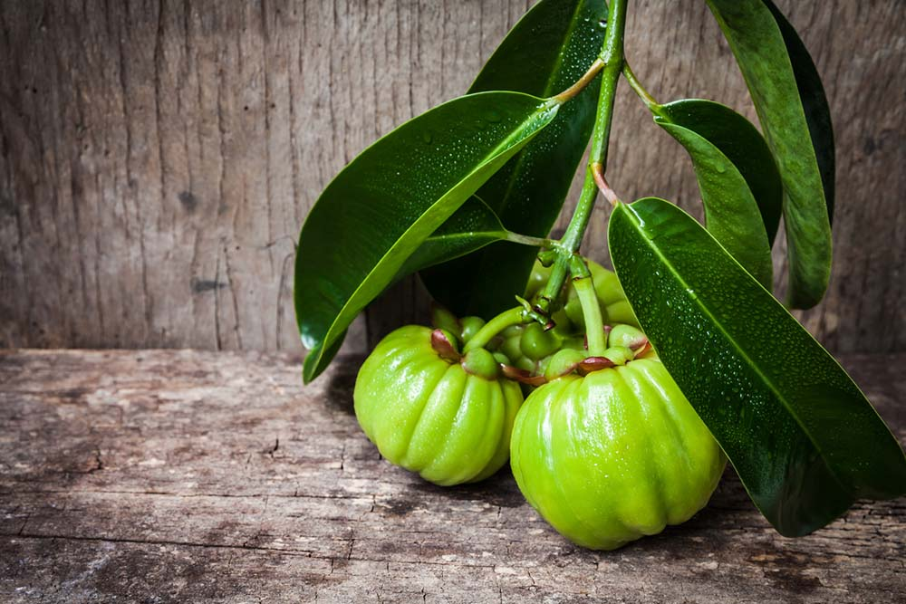 garcinia-cambogia-truth-about-weight-loss-supplements.jpg