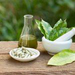 Ashwagandha: A Multi Benefit Exotic Indian Herb